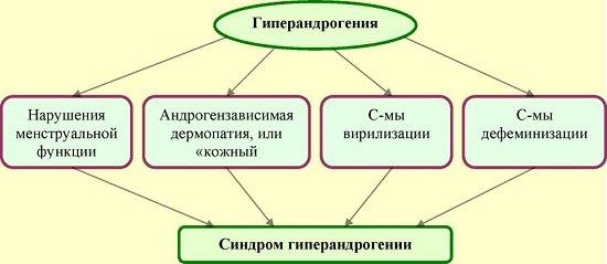 sindrom giperandrogenii yaichnikovogo nadpochechnikovogo i smeshannogo geneza u zhenshhin