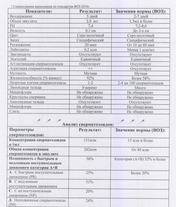 spermogramma normy i pravila sdachi analiza pokazateli i rasshifrovka