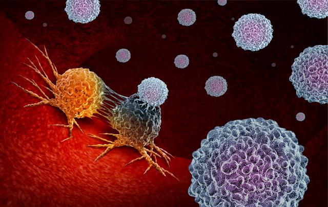 immunoterapiya pri rake molochnoj zhelezy mishen opuhol a organizm ostavim v pokoe