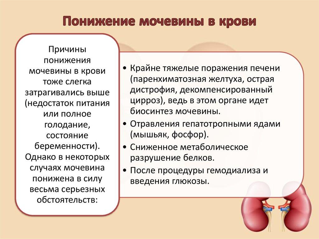 nizkij uroven mocheviny v krovi