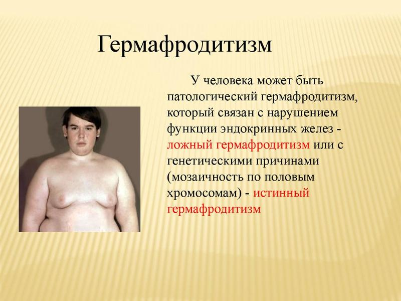 zhenskij germafroditizm osobennosti patologii i ee podrobnoe opisanie