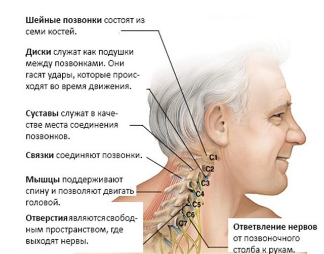 osobennosti medikamentoznogo lecheniya shejnogo osteohondroza