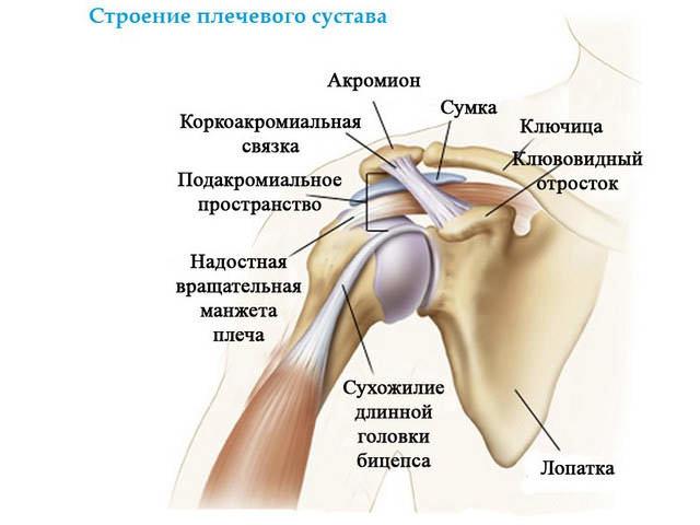 prichiny i lechenie rastyazheniya svyazok plechevogo sustava