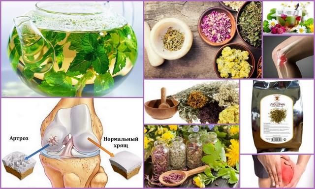 tradicionnye i narodnye sposoby lecheniya artroza
